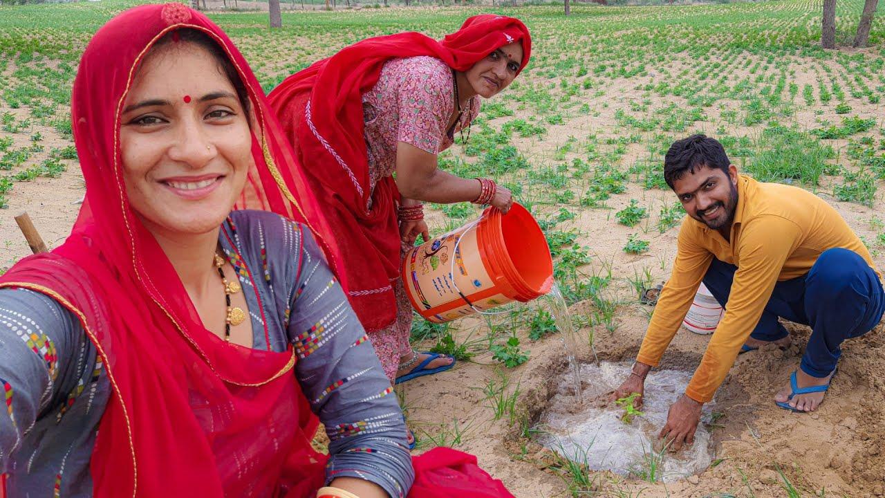 my village tree plantation || मेरे गांव में पेड़ लगाते हुए #Women #tree