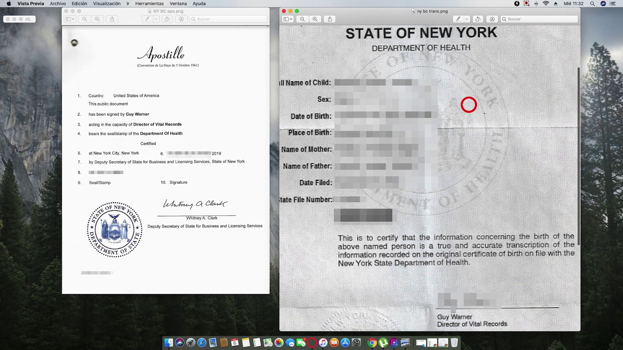 How to Apostille a New York Birth Certificate issued by Department of  Health signed by Guy Warner