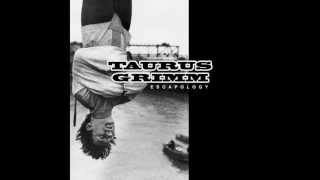 Taurus Grimm - White Owl Burning