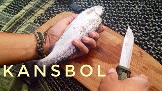 Mora Kansbol Review! Trout Cooking