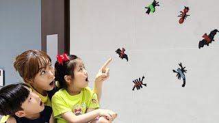 벌레가 벽에 붙어있어요!! 서은이의 던지면 벽에 붙는 거미 박쥐 전갈 상어 슬라임 곤충 보물찾기 Bugs Wall Thrown Seoeun Story