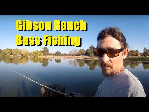 Gibson Ranch Fishing #GibsonRanch
