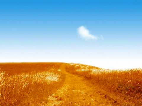ATB The Fields Of Love (Darude RMX)