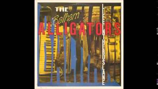 BALHAM ALLIGATORS -- ALLIGATORS GRINNING