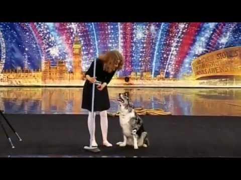 Chú chó đi thi Got Talent quá đỉnh.