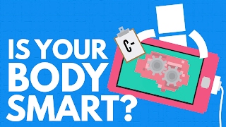 How Smart Is Your Body?