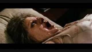 映像>dawn of the dead、ZOMBIE、28週後...、ナイト・オブ・ザ・リビングデッド.