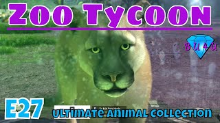 Russia: Making room for the young - Zoo Tycoon: UAC | South American Campaign 4