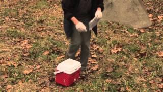 Cadaver Dog Solo Training
