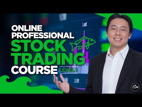 Professional Stock Trading Course Lesson 1 of 10  by Adam Khoo