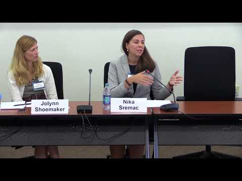 Women, Peace & Security 2017 | Panel Discussion: Ongoing Concerns - The Next Decade (Part 2)