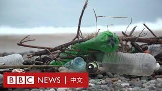 黑海清潔:能否拯救歐洲污染最嚴重的海?- BBC News 中文