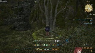 Miqobot | The First Final Fantasy XIV Bot with DirectX 11
