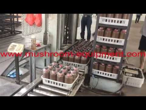 autoclave mushroom cultivation production line for mushroom bag