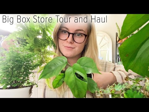 big-box-store-tour-&-haul!-plant-shopping-at-grocery-store-for-21-day-quarantine