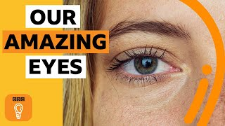 What do our eyes say about us? | BBC Ideas