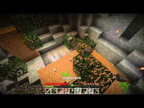 ¤ 8 ¤ | Survival Island | Le bois en sous-sol