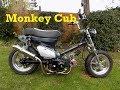 Honda monkey Cub
