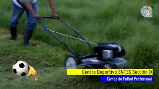 CAMPO DE FUTBOL PROFESIONAL