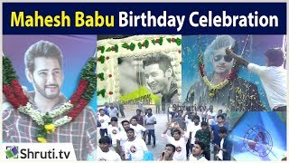 Mahesh Babu Birthday Celebration at Chennai | Dookudu Re-Release