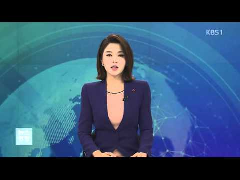 KBS 뉴스광장1부 적십자 행사(임형주)