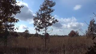 BOOT LAKE COUNTY PARK part 5