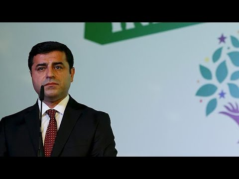 Arrests leave a 'dark stain' on Turkey's history - HDP - world