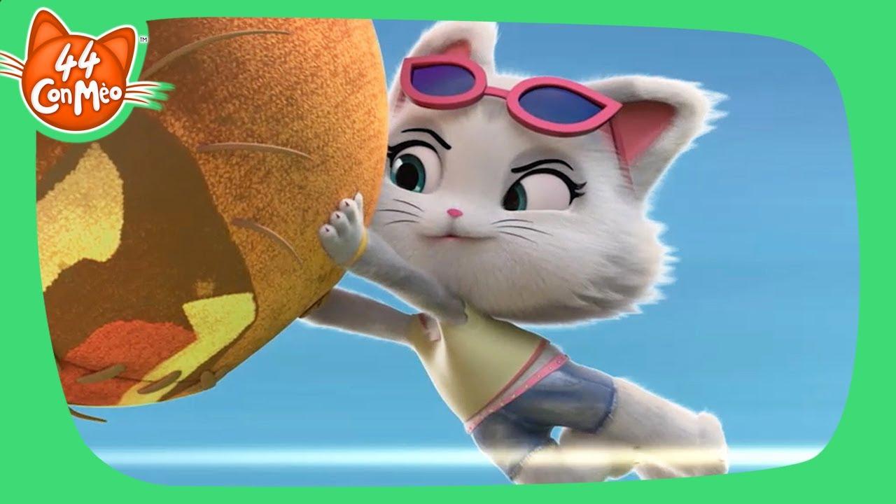 44 Con Mèo | Cuộc phieu lưu trên cả tuyệt vời!