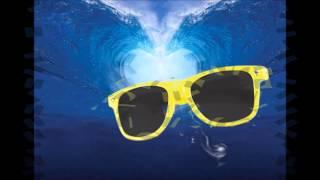 Óculos de Sol - Natercia Barreto