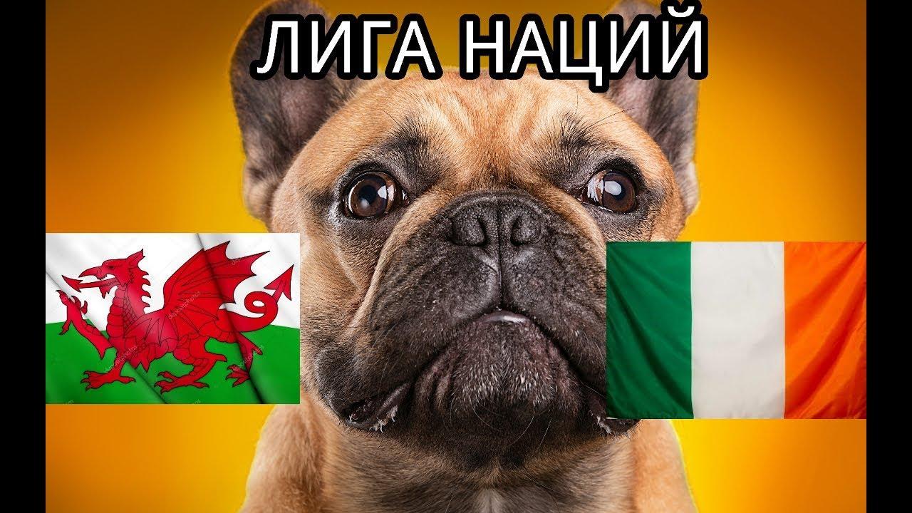 Прогноз на Лигу Наций: Уэльс – Ирландия – 6 сентября 2018 года