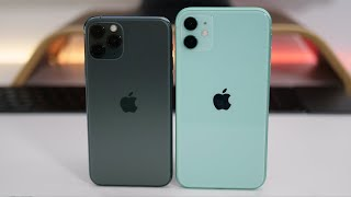 iPhone 11 Pro vs iPhone 11 - Which Should You choose?