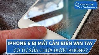 iPhone 6 bị mất cảm biến vân tay có tự sửa chữa được không?