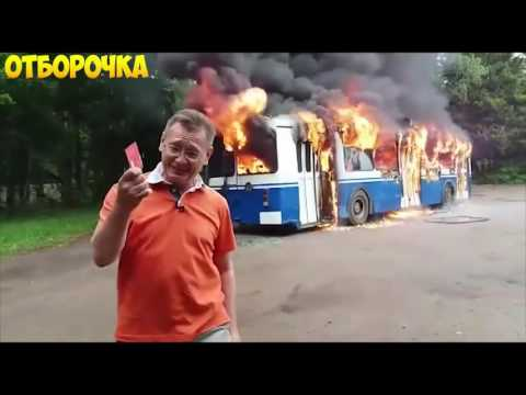 Приколы ВЫПУСК #1-МОЙ БРАТАН ТИГР