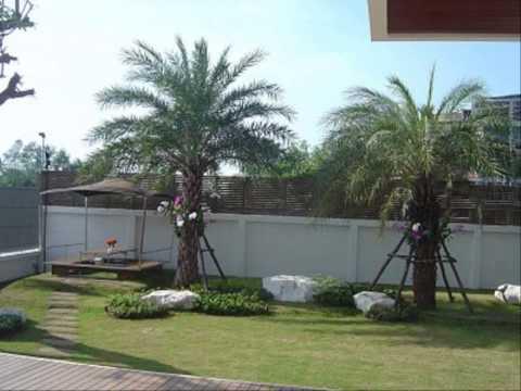 จัดสวนหลังบ้านเล็กๆ ออกแบบสวนหย่อมหน้าบ้าน