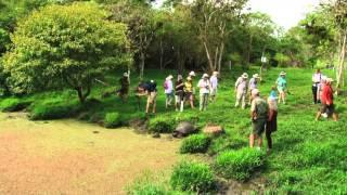 Galápagos Giant Tortoises Up Close
