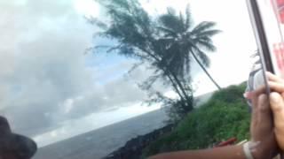 Car bass tiarei trou du soufleur from Tahiti