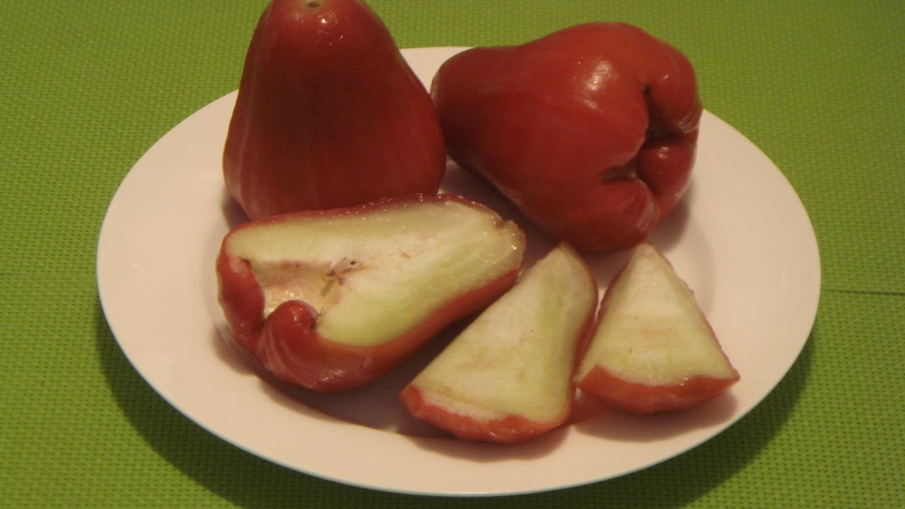 Rose apple how to eat wax apple water apple jambu fruit java rose apple how to eat wax apple water apple jambu fruit java apple voltagebd Gallery