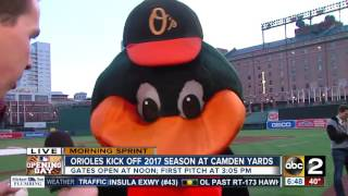 the oriole bird talks to abc2s brendan mcnamara on opening day