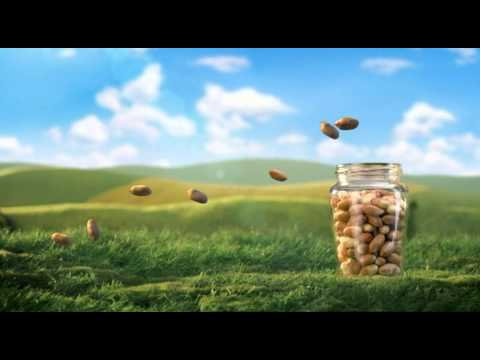 Kallo Foods - Whole Earth Peanut Butter