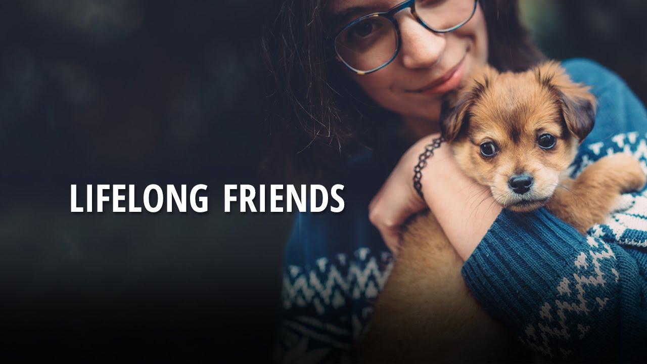life long friend rj - 1280×720