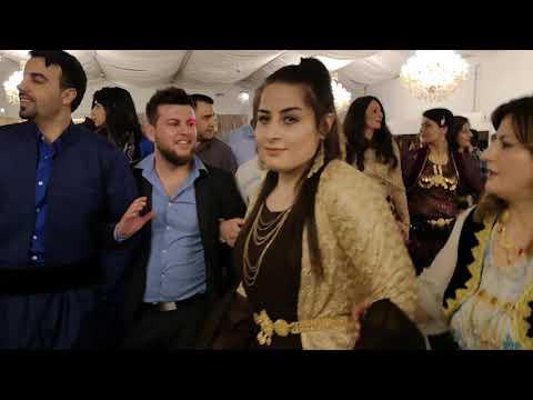 Newroz 2019 Danmark Med Aziz Weisi Og Adel Hawrami Video 4