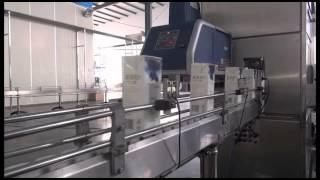 автомат розлива в пакет  тетра пак  2000шт/час(1) Производительность 2000 шт/час для автомата розлива в Тетрапак 2) Производительность 6000-7000шт/час для автом..., 2015-07-14T02:34:25.000Z)