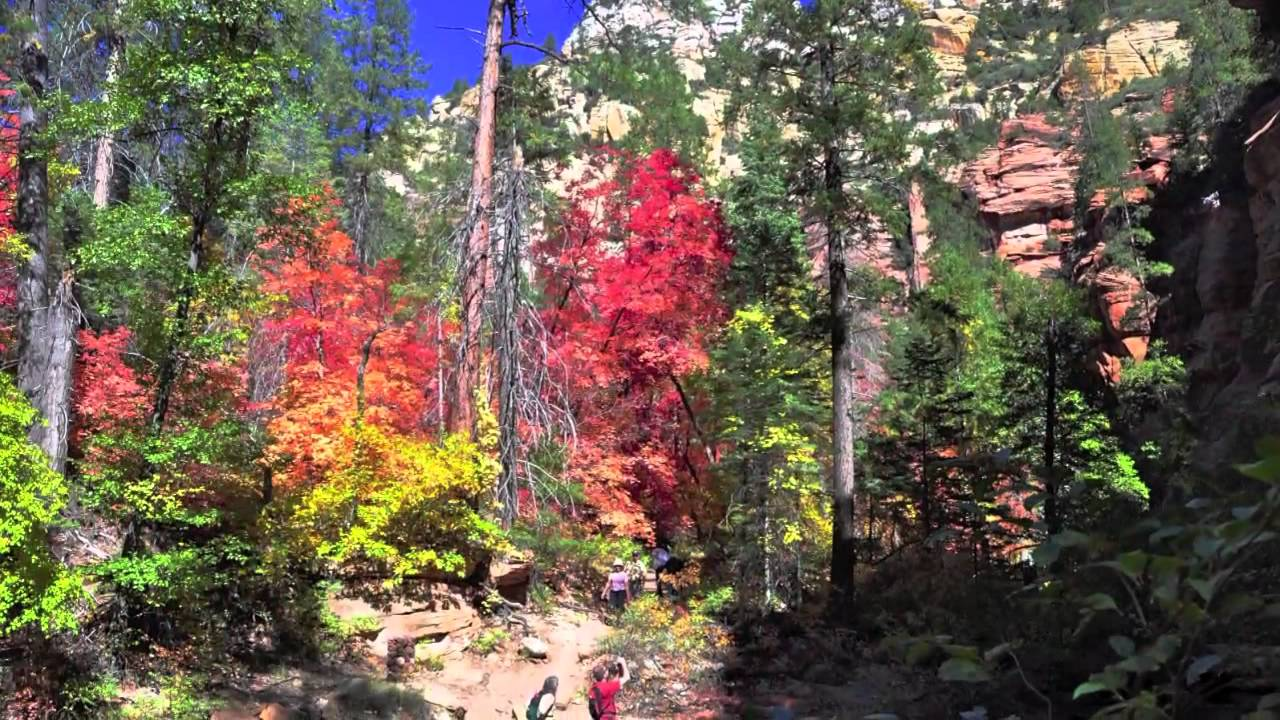 West Fork Trail Sedona Hiking Trail Www Thehikehouse