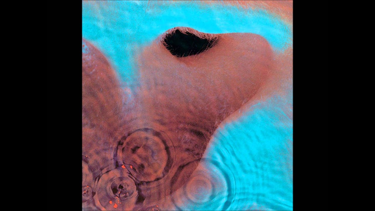pink floyd - fearless  remastered - hq
