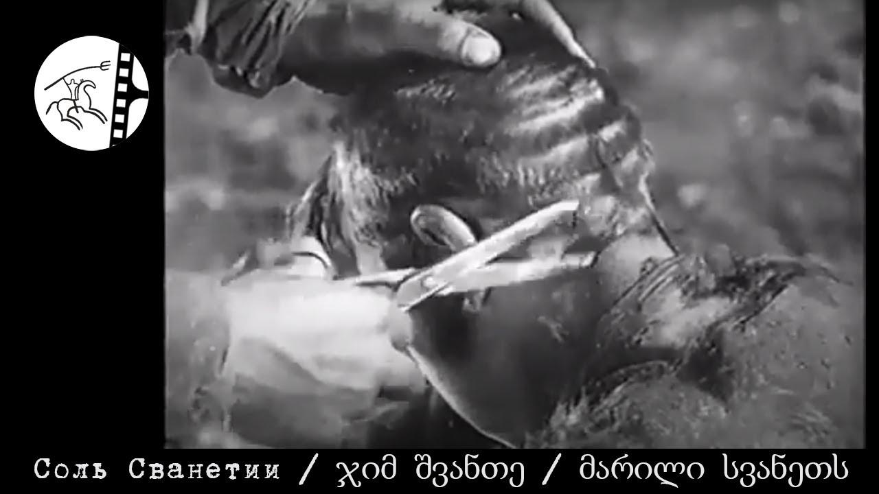Соль-Сванетии-მარილი-სვანეთს-ჯიმ-შვანთე-Документальный-фильм