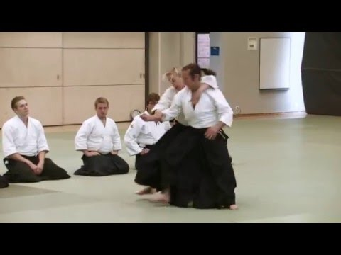 Finland Aikikai 45 Years Demonstration (2015)
