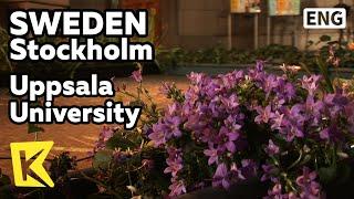 【K】Sweden Travel-Stockholm[스웨덴 여행-스톡홀름]웁살라대학의 칼 린네/Uppsala University/Cathedral/Carolus Linnaeus