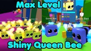 I Got Shiny Queen Bee! Max Level & Enchant! New Rarest Pet! - Bubble Gum Simulator