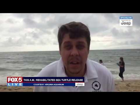 "FOX 5 LIVE (7/10): Wareham, MA school lockdown; sea turtle release; NY/NJ ""Summer of Hell"""