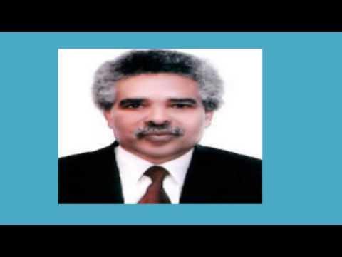 Radio Voice of Eritrea speaks to Negusse Haile Mensaay
